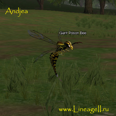 Giant Poison Bee