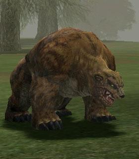 Image result for l2 bear